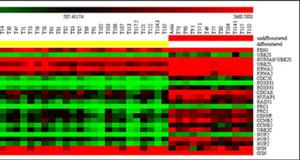 Caratterizzazione biomolecolare del mastocitoma di cane mediante microarray