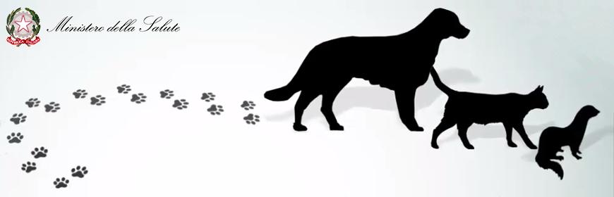 Corso on-line sulla movimentazione a fini non commerciali di animali da compagnia