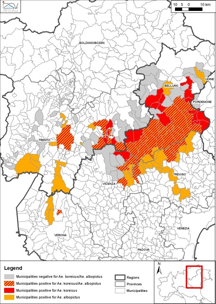 La diffusione della zanzara coreana in Veneto