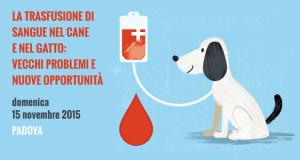 Trasfusione di sanuge nel cane e nel gatto, giornata di formazione a Padova