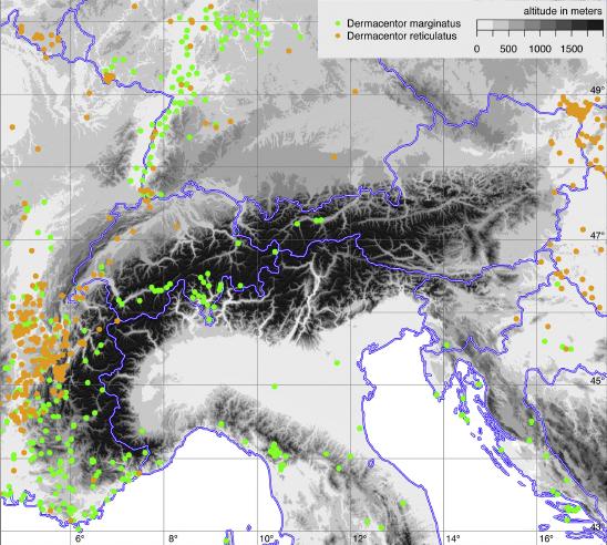 Mappa Dermacentur Reticulatus Europa